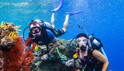 Intro Scuba Diving